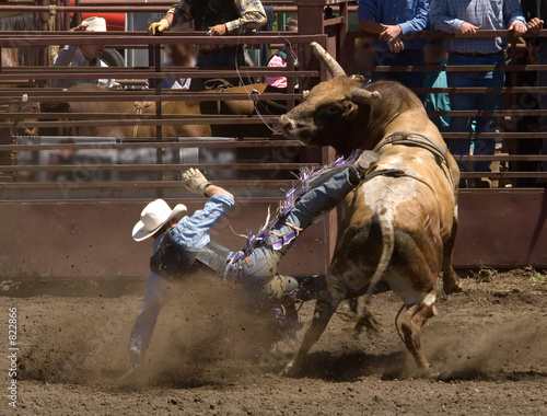 Fotografía  rodeo bull rider