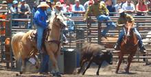 Steer Wrestlers