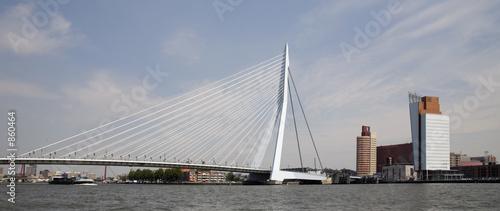 Staande foto Rotterdam suspension bridge 6