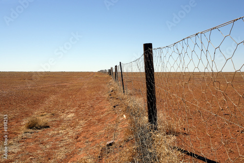 Fotografie, Obraz  australian outback dingo fence