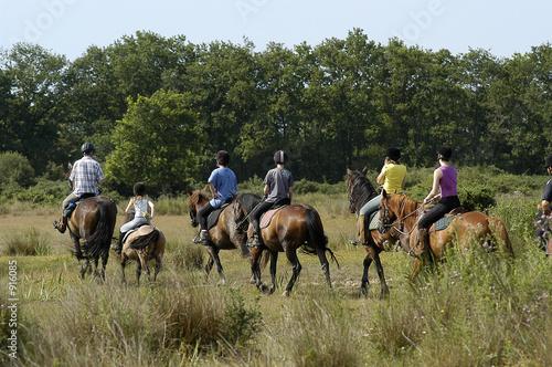 Poster Equitation marais de guérande