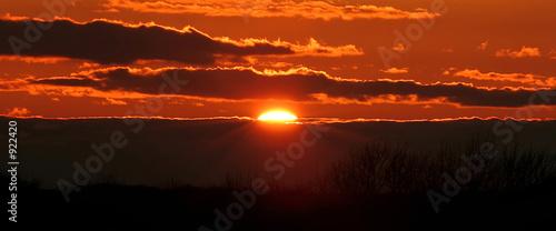 Garden Poster Brown fireball sunset