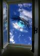 canvas print picture - window