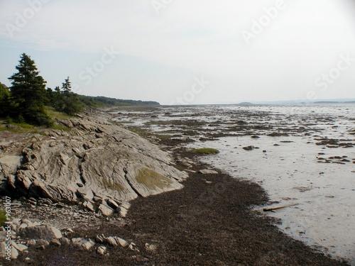 Obraz na plátně paysage maree basse