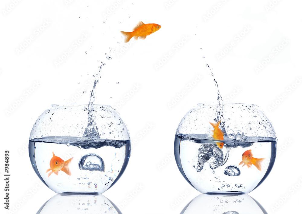 Fototapety, obrazy: splash!!!