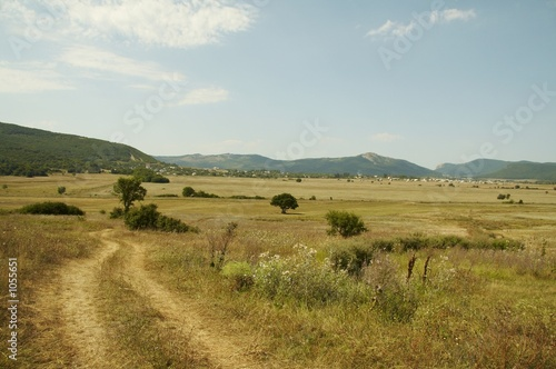 Spoed Foto op Canvas Natuur yellow grassland