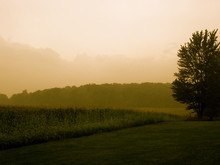 Indiana Morning