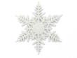 canvas print picture - winter snowflake