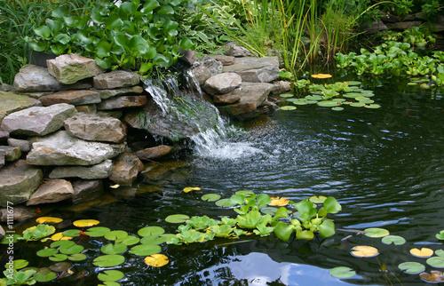 Fotomural homemade pond