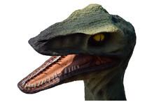 Tête De Dinosaure
