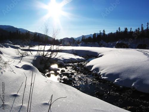 Autocollant pour porte Reflexion winter sun