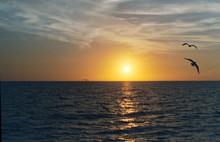 Florida Sunset - Gulf Coast