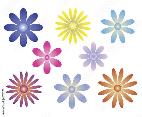 flower variety pack Wallpaper Mural