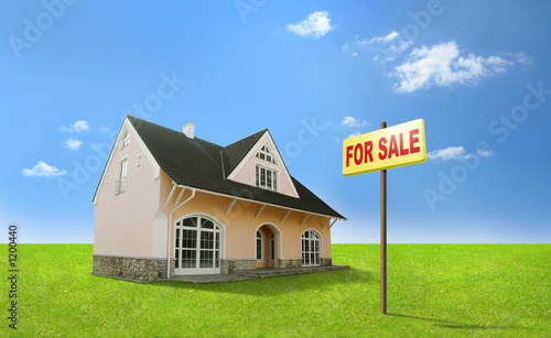 dream home for sale. real estate, realty, realtor. фототапет