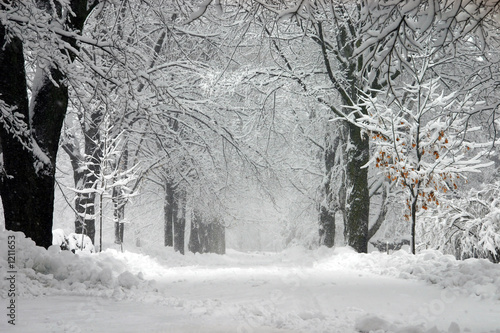 Foto op Aluminium Onweer winter storm