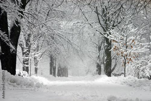 Staande foto Onweer winter storm