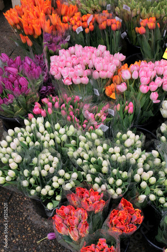 tulip stall Poster