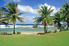 Img_9792 Beach At Bathsheba, B...