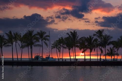 Foto-Schiebegardine Komplettsystem - tropical sunset picture (von Vlad Turchenko)