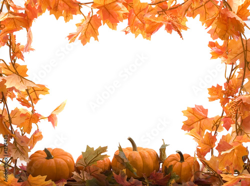 Fotografie, Obraz  pumpkins with fall leaves