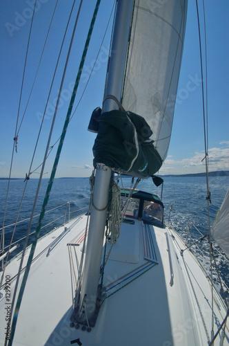 Canvas Print sailing away