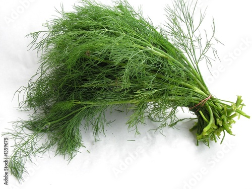 Fotomural dill leaves bunch