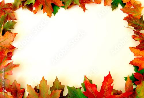 Fotografie, Obraz  fall portrait