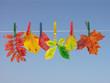 Leinwandbild Motiv fall leaf drying