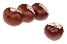 Chestnuts. Game