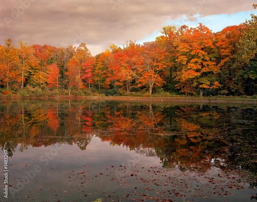 Keuken foto achterwand Rood traf. autumn lake