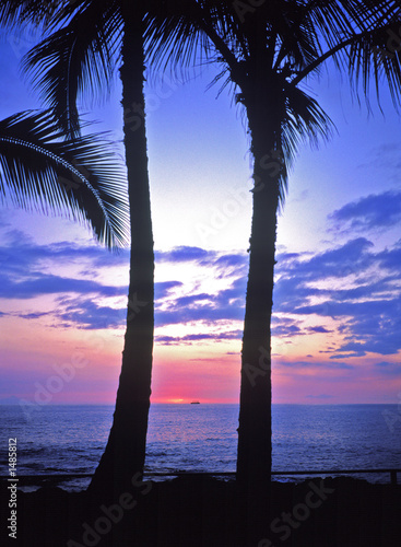 Foto-Rollo - hawaii sunset (von Scott Bufkin)