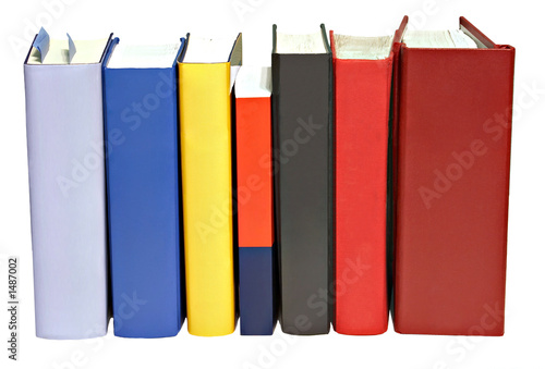 books standing abreast Canvas Print
