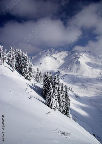 Fototapeta  snowy mountain