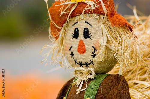 Obraz na plátně autumn decoration