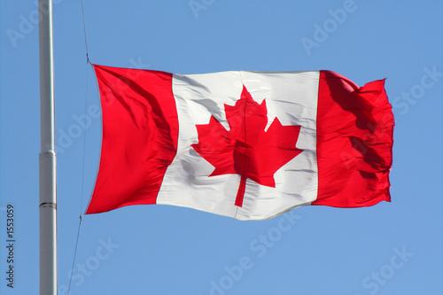 Spoed Foto op Canvas Canada canadian flag
