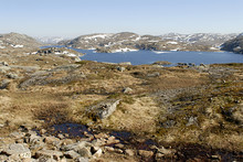 Mountain Lake And Permafrost