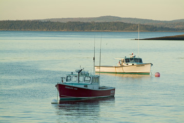 lobster boats docked in bar harbor maine