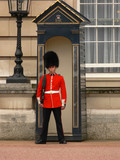 Fototapeta Londyn - buckingham palace guard