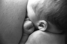 Bébé Au Sein 2