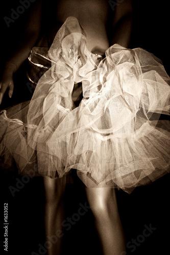 Obraz na plátně petticoat