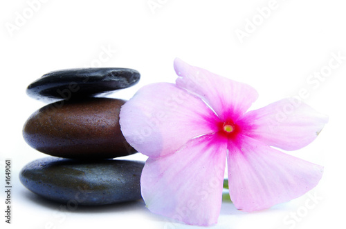 Doppelrollo mit Motiv - pink flower and stones