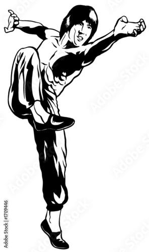 kung fu block & strike Canvas Print