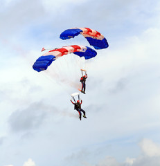 Fototapeta paratroopers descending in a military skydiving pa