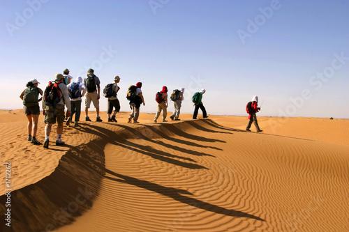 randonneurs dans le désert Canvas Print