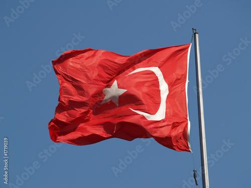 bandera de turquia Canvas Print