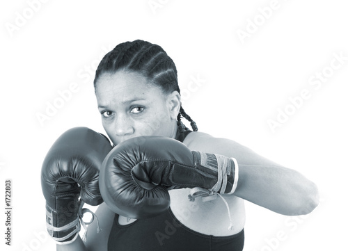 Fotografía  boxer