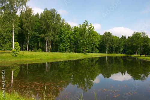 Fototapeta pond mirror obraz na płótnie