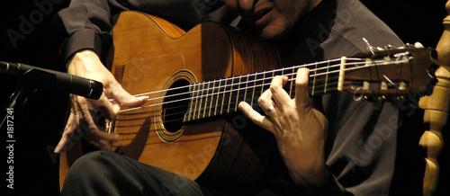 Fotografie, Obraz  homenaje-5722