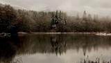 snow storm on grandy lake - 1823867