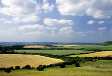 Rolling English Countryside The Chilterns Buckingh